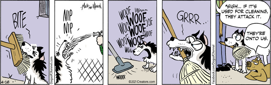 Dogs of C-Kennel for Apr 16, 2021